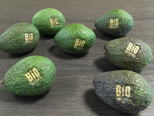 Avocado mit Bio-Branding-Logo