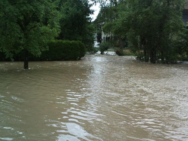 Überschwemmung in Möhlin. Der Boden ist nicht mehr zu sehen.