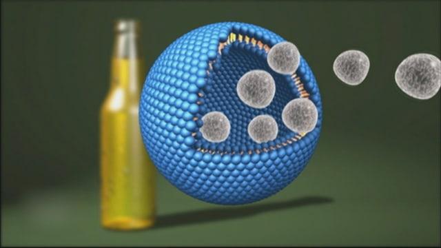 Video ««Nanotechnologie: Was bringt sie uns?»» abspielen