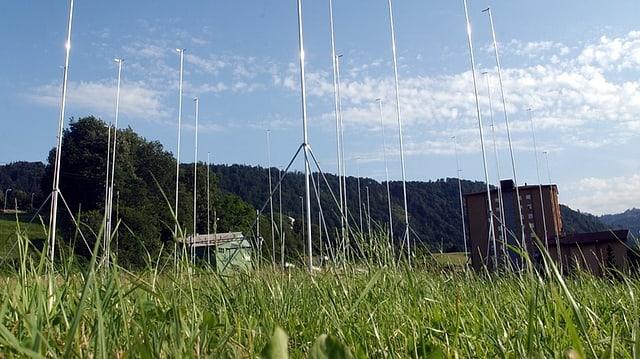 Bauvisiere sthen auf einer grünen Wiese