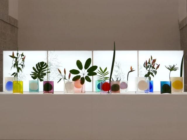 Bunte Vasen mit Pflanzen