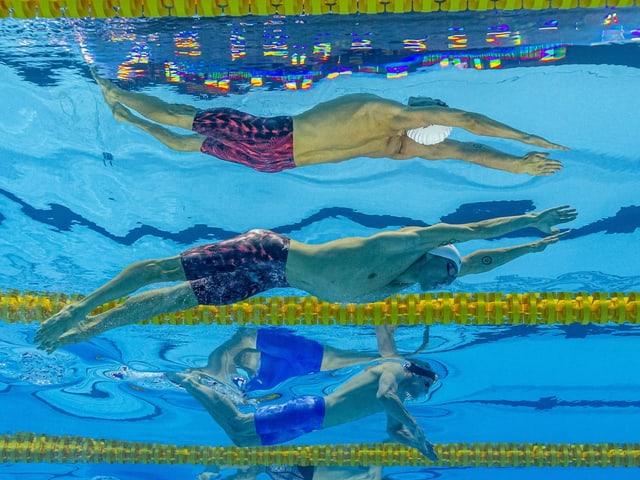 Die Schwimm-EM in Budapest wird verschoben