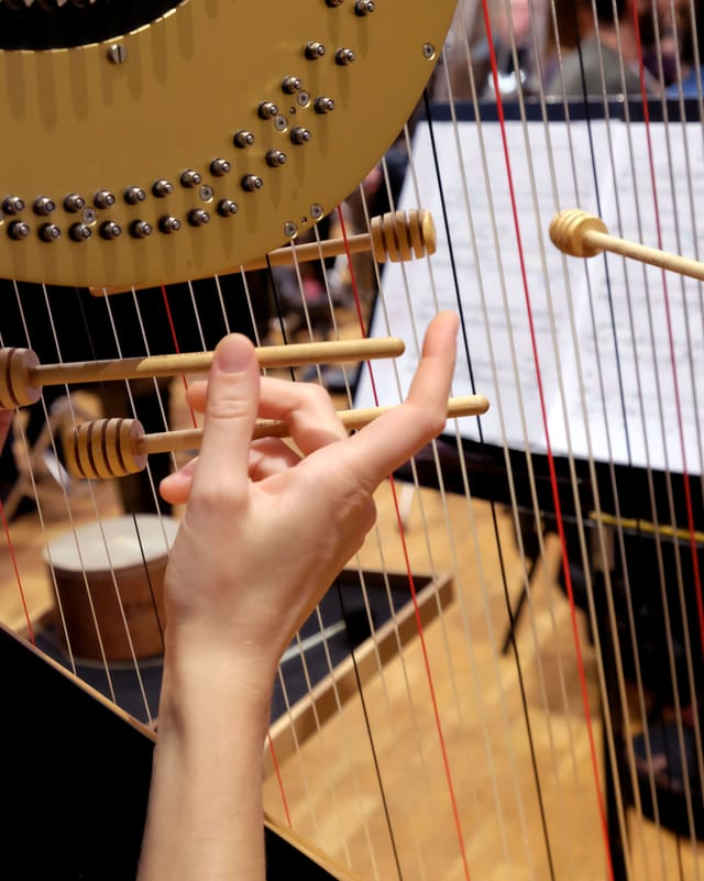 Honiglöffel, zwischen die Seiten einer Harfe gespannt.