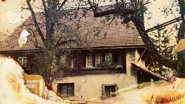Das Messie-Haus