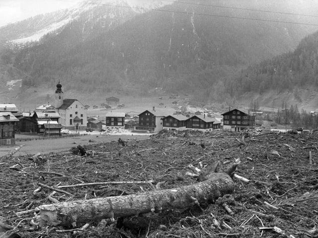 Baumstämme und Äste im Vordergrund, dahinter ein Dorf.