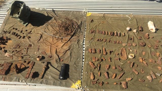 Überreste, welche im Moor gefunden wurden
