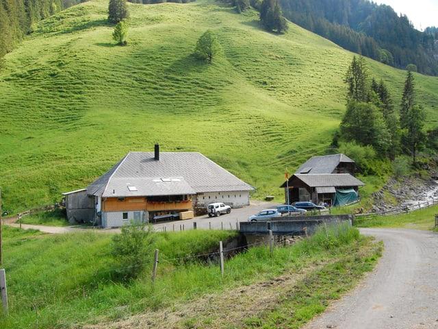 Alp Langenegg