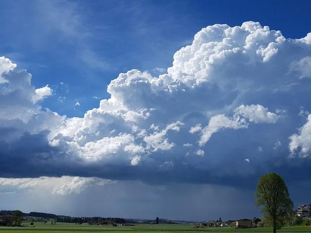 Eine mittelgrosse Gerwitterwolke türmt sich auf.