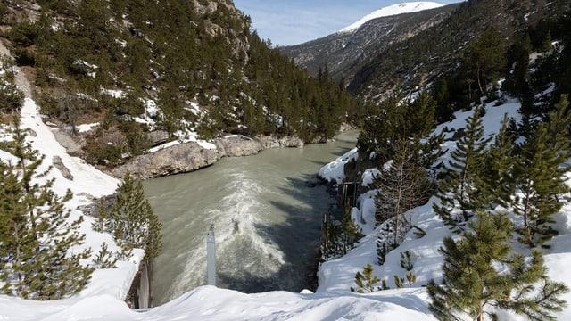 Bach Spöl im Nationalpark