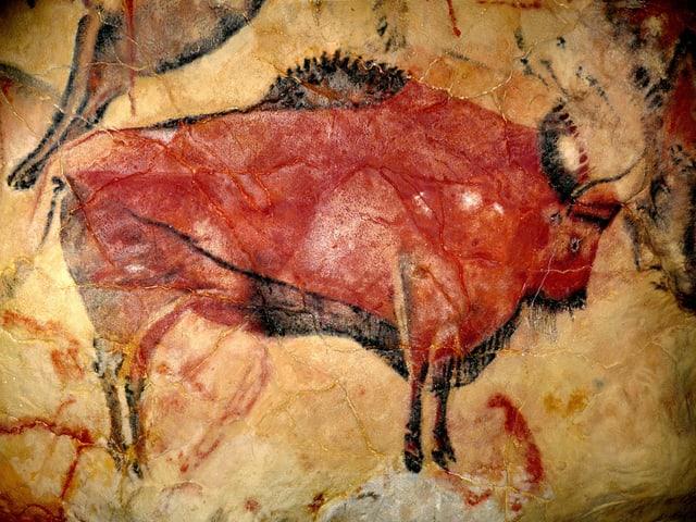 Eine Höhlenmalerei zeigt einen Bison.
