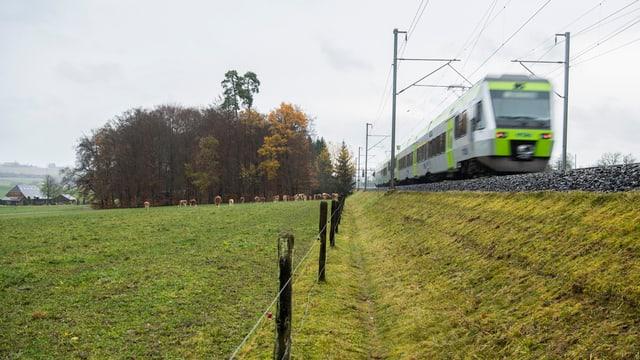 Zug fährt an einem Feld entlang
