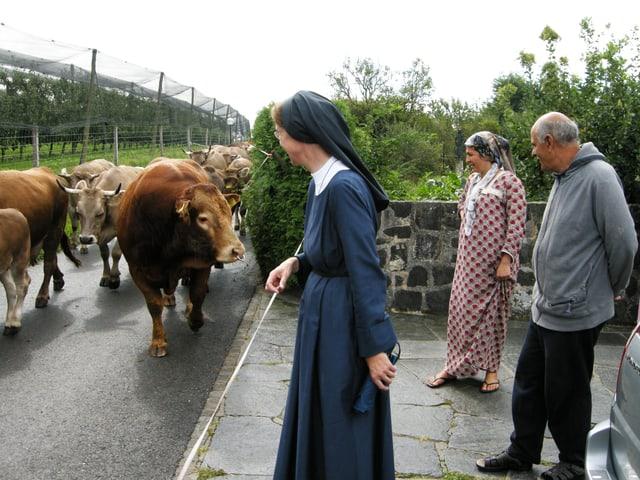 Eine Nonne und die Eltern der Flüchtlingsfamilie stehen am Strassenrand, Kühe gehen vorbei.