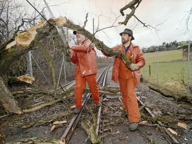 Mitarbeiter der Regionalbahnen Bern Solothurn RBS versuchen die Geleise zwischen Bolligen und Deisswil von durch den Sturm Lothar geknickten Bäumen zu befreien.
