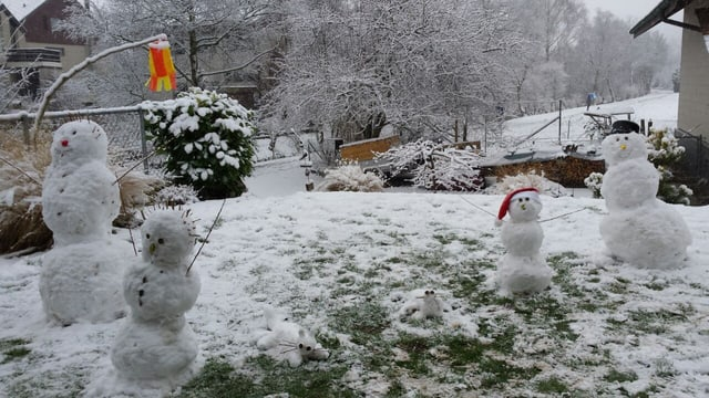 Vier Schneemänner und zwei Katzen aus Schnee.