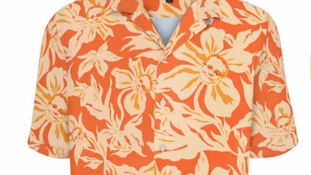 Nahaufnahme des Hawaiihemds