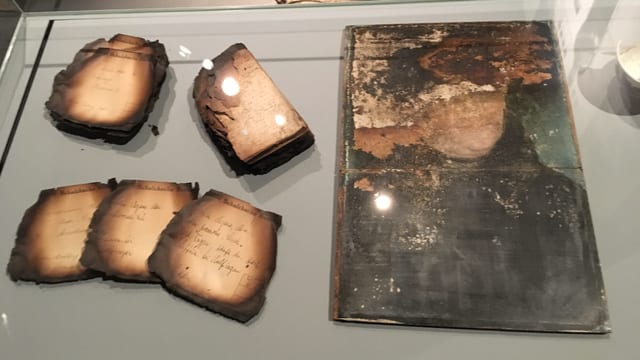 Verkohlte Dokumente und ein schwer beschädigtes Gemälde.