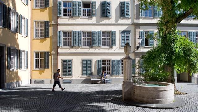 Ein einsamer Baum mitten in der Winterthurer Altstadt