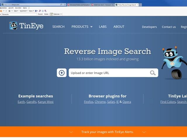 Screenshot www.tineye.com.