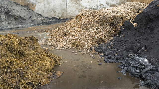 Die Lagerung von Mist und Grünabfällen bei einer Biogasanlage