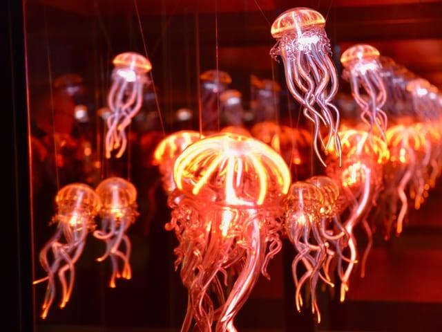 Ein Raum voller Neon-Qualllen. Oder sind es doch nur Spiegeleien?