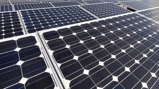 Sonnenstrom aus dem Wallis. Weinproduzent Rouvinez investierte in eine Solaranlage.