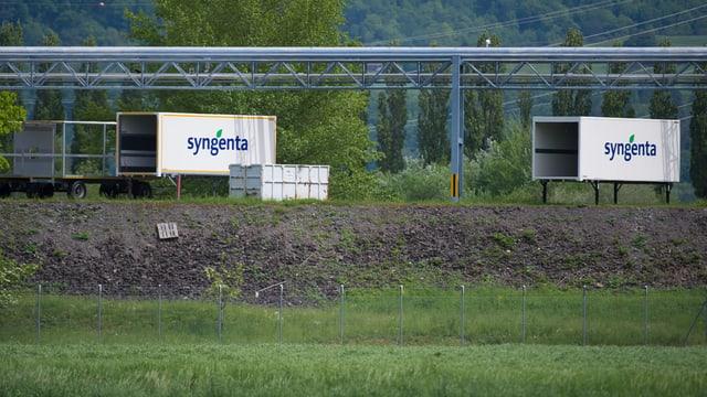 Containers da Syngenta sin in prà.