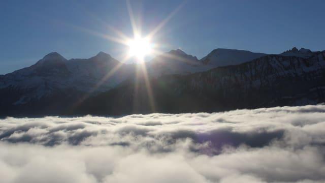 Blick von Beatenberg über ein Nebelmeer zur wolkenlosen Jungfrau.