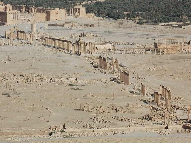 Die antike Oasenstadt Palmyra