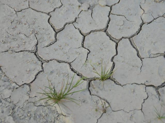 Risse im trockenen Boden.