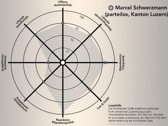 Das politische Profil von Marcel Schwerzmann.