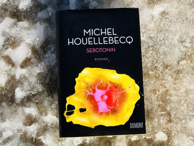 «Serotonin» von Michel Houellebecq liegt auf eisigem Untergrund