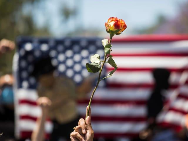Hand mit Rose vor US-Flagge.