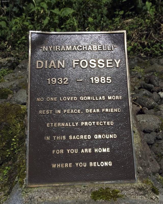 Der Grabstein von Dian Fosseys beim Karisoke Research Center in Ruanda.