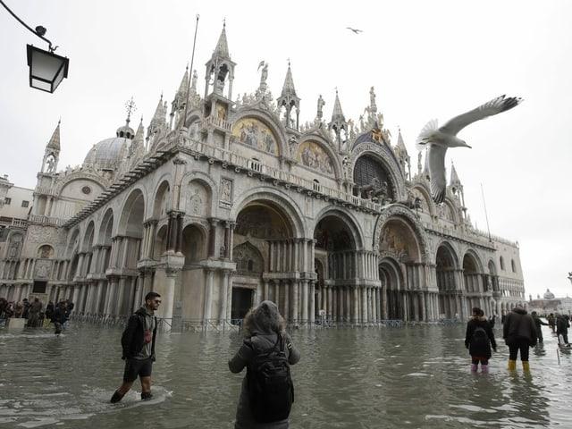 Der Markusdom in Venedig.