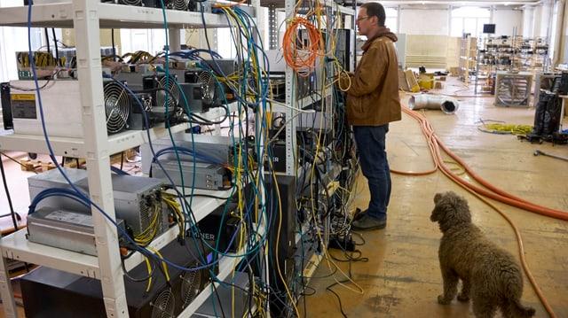 In einer Fabrikhalle: Gestell mit vielen Kabeln und Rechner. Ein Mann steht davor, hinter ihm ein Hund.