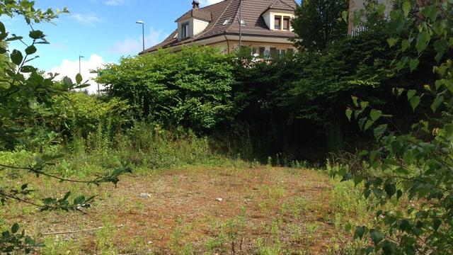 Leere Wiese, Haus im Hintergrund