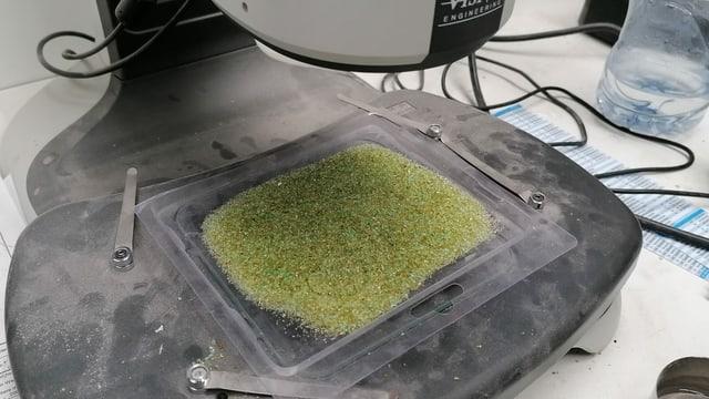 Glas-Körnchen unter Mikroskop