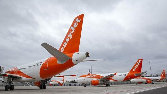 Viele Maschinen des britischen Billigfliegers Easyjet stehen zurzeit auf dem Flughafen in Genf still.