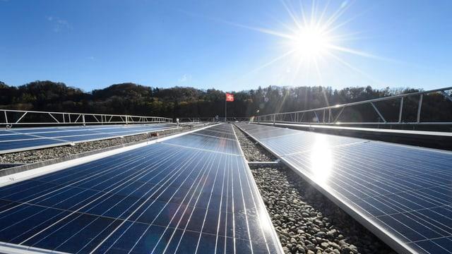 Module einer Photovoltaik-Anlage
