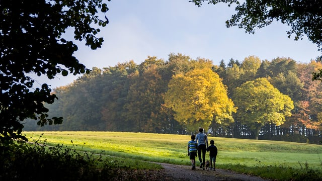 Ein Erwachsener im zwei Kindern beim Waldspaziergang.