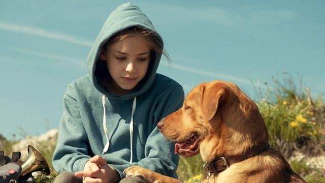Lili in blauem Kapuzenpullover mit Hund Hagen (braun) auf einer Wiese.