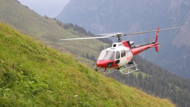 Helikopter im Suchgebiet