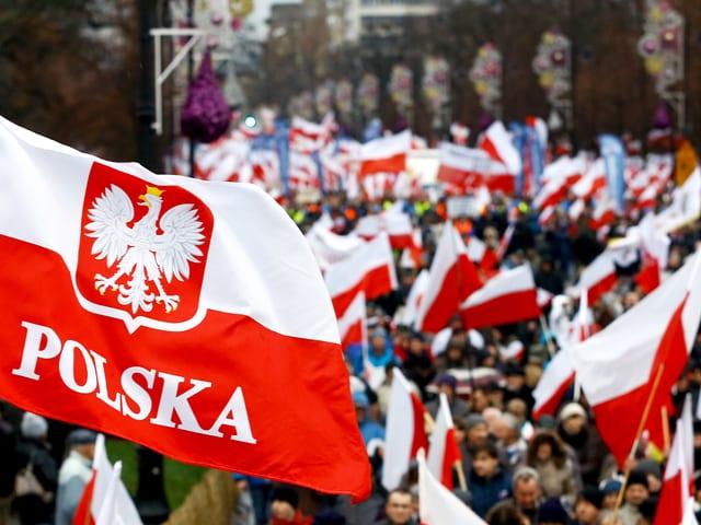 """Eine Demonstration mit weiss-roten Fahnen, im Vordergrund eine Fahne mit der Aufschrift """"Polska""""."""