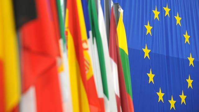 Differentas bandieras da pajais. Quella da l'UE en il center.