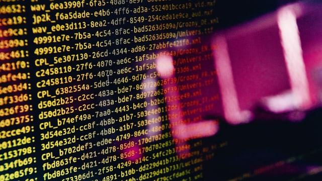 Ein unscharfer violetter Gegenstand, dahinter ein Screen voller gelber Code-Zeilen.