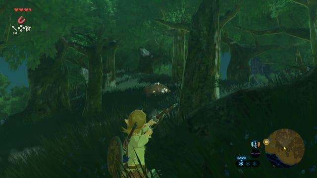 Im Wald anpirschen.