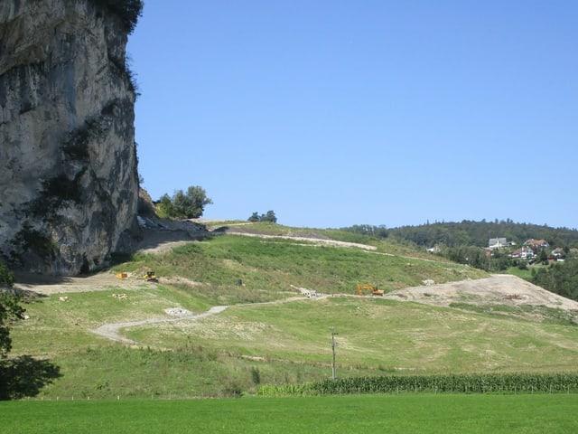 Wiesen und Felswand