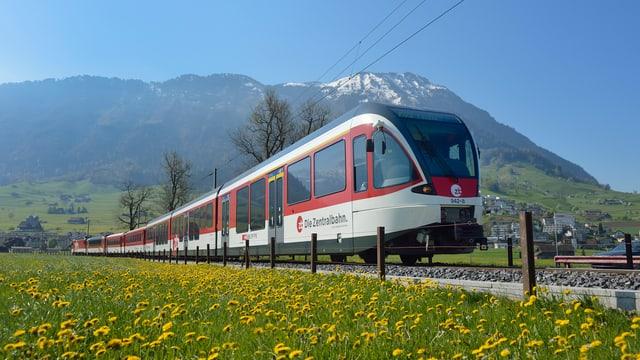 Zug der Zentralbahn