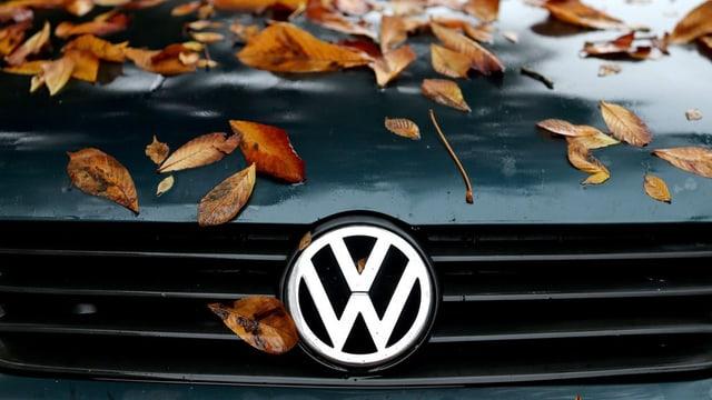 Logo da VW, e feglia sin l'uviertgel d'in auto.