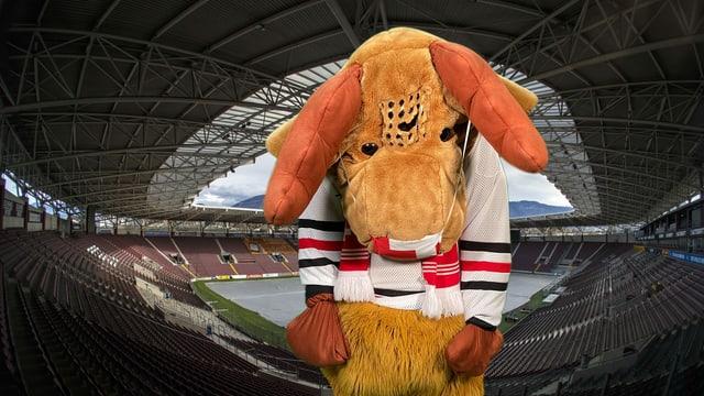 Edi Elch traurig im Stadion